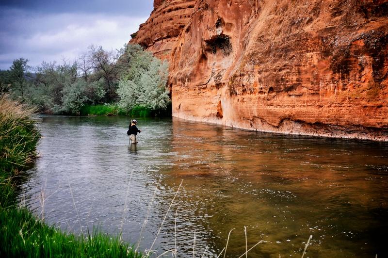 11-Bighorn river
